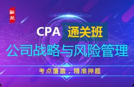 2018年CPA通关班(精讲+习题+冲刺)--公司战略与风险管理